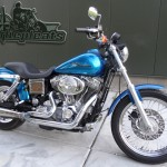 Stage 1 Dyna custom