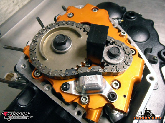Primary cam chain tensioner dual piston