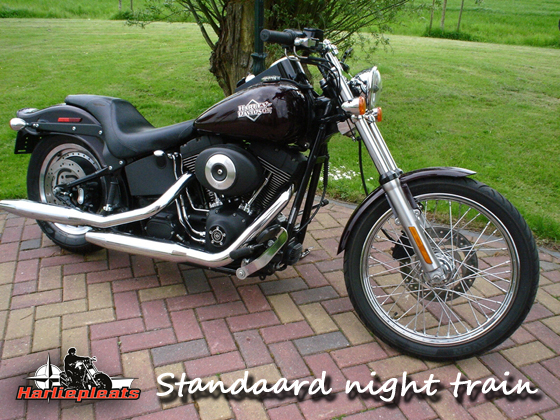 Standaard harley davidson night train